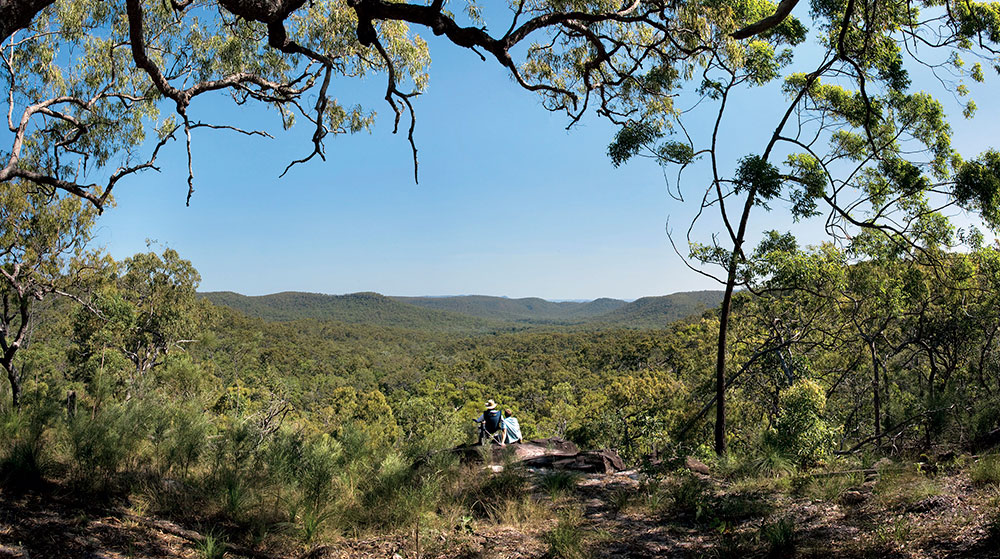 Rock Art Tours - image courtesy of Tourism and Events Queensland